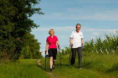 Glückliche fällige oder ältere Paare, die das Nordicgehen tun Lizenzfreies Stockfoto