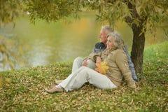 Glückliche fällige Paare Lizenzfreies Stockbild