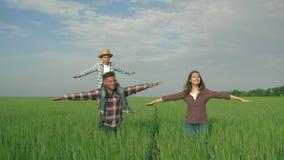 Glückliche Familie auf dem Gebiet, lächelnder Mann mit Kinderjungen auf Schultern und Frau mit den Armen zum Seitenweg auf dem gr stock footage