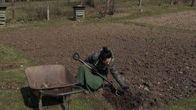 Glückliche Familie, die auf Feld nahe Schubkarre im Garten arbeitet stock video footage