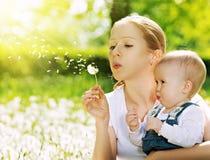 Glückliche Familie. Die Mutter und Baby, die auf einem Löwenzahn durchbrennen, blühen Stockfoto