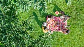 Glückliche Familie, die Picknick im Park, Eltern mit den Kindern sitzen auf Gras und draußen essen gesunde Mahlzeiten, Vogelpersp lizenzfreie stockfotografie