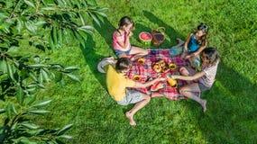 Glückliche Familie, die Picknick im Park, Eltern mit den Kindern sitzen auf Gras und draußen essen gesunde Mahlzeiten, Vogelpersp lizenzfreies stockbild