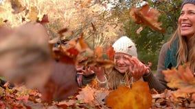 Glückliche Familie, die Spaß zusammen hat stock footage