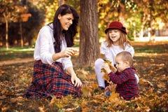 Glückliche Familie im Wald Lizenzfreies Stockbild