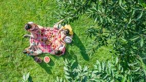 Glückliche Familie mit den Kindern, die Picknick im Park, Eltern mit den Kindern sitzen auf Gartengras und draußen essen gesunde  stockfotografie