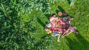 Glückliche Familie mit den Kindern, die Picknick im Park, Eltern mit den Kindern sitzen auf Gartengras und draußen essen gesunde  lizenzfreie stockfotografie