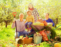 Glückliche Familie mit Ernte Lizenzfreie Stockbilder