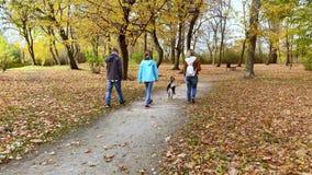 Glückliche Familie mit Hund im Park stock video footage
