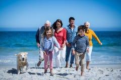 Glückliche Familie mit ihrem Hund am Strand lizenzfreie stockfotografie