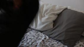 Glückliche Frau, die in Bett fällt