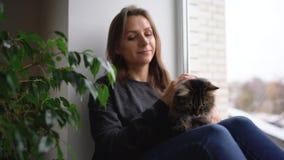 Glückliche Frau sitzt auf dem Fensterbrett mit einer Katze auf ihrem Schoss und streicht ihren flaumigen Pelz stock video