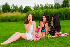 Glückliche Freunde auf Picknick im Park Lizenzfreie Stockbilder