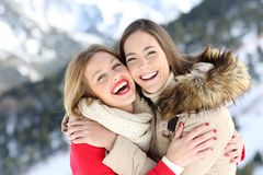 Glückliche Freunde, die im Winterurlaub streicheln und aufwerfen stockfotos