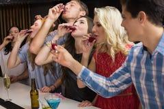 Glückliche Freunde, die zusammen etwas trinken Stockfotografie
