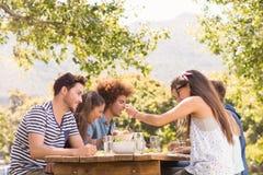 Glückliche Freunde im Park, der zu Mittag isst Lizenzfreie Stockbilder
