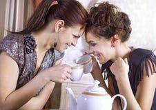 Glückliche Freundinnen lizenzfreie stockbilder