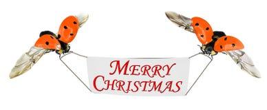Glückliche frohe Weihnachten! Stockfotos