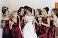 Glückliche Gruppe von Personen, die mit Champagner röstet Hände, die gla halten Lizenzfreie Stockfotos