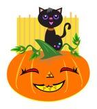 Glückliche Halloween-Katze und Kürbis Stockfoto