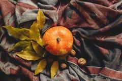 Glückliche Halloween- oder Danksagungsebenenlage Herbstkürbis mit Co
