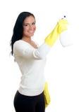 Glückliche Hausfrau mit Fensterreinigungsmittel. Stockfoto
