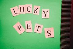 Glückliche Haustieraufschrift auf einem grünen Hintergrund lizenzfreie stockfotos