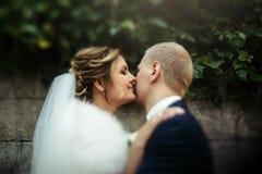Glückliche herrliche blonde Braut und stilvoller hübscher Bräutigam mit wahrem Lizenzfreie Stockfotografie
