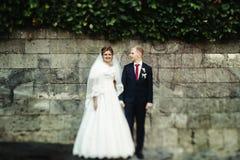 Glückliche herrliche blonde Braut und stilvoller hübscher Bräutigam mit wahrem Stockbilder