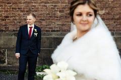 Glückliche herrliche blonde Braut und stilvoller hübscher Bräutigam mit wahrem Stockfotos