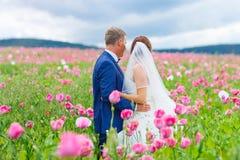 Glückliche Hochzeitspaare auf dem rosa Mohnblumengebiet stockfoto