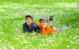 Glückliche junge Brüder Stockbilder