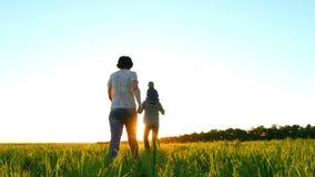 Glückliche junge Familie, die auf einen grünen Rasen, auf einem Sonnenunterganghintergrund, in der Zeitlupe geht Vati hält das Ki stock footage