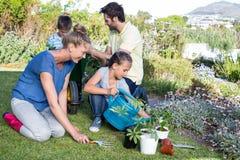 Glückliche junge Familie, die zusammen im Garten arbeitet Lizenzfreie Stockfotografie
