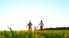 Glückliche junge Familie mit einem Kind, das auf dem grünen Rasenhändchenhalten auf einem Sonnenunterganghintergrund, in einer Ze stock video footage