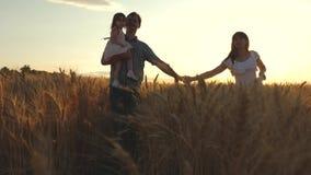 Glückliche junge Familie mit einem Kind geht auf ein Weizenfeld Vatertochter und -mutter spielen auf dem Feld Mama-Mutter stock video