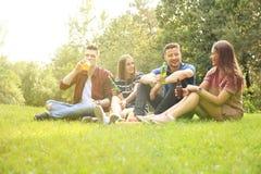 Glückliche junge Freunde, die Picknick und das Essen genießen lizenzfreie stockfotos