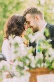 Glückliche junge Jungvermähltenpaare im Park Romantische Jugendliche, die durch Stirnen sich berühren Stockbild