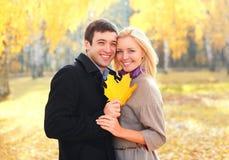Glückliche junge lächelnde Paare des Porträts mit gelben Ahornblättern in warmem sonnigem lizenzfreie stockfotos