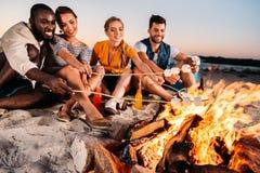 glückliche junge multiethnische Freunde, die Eibische am Feuer braten stockfotos