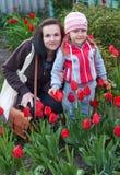 Glückliche junge Mutter mit dem Baby, das auf einem Gebiet von Tulpen spielt Stockbilder