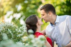 Glückliche junge Paare, die im Park küssen Lizenzfreies Stockbild