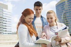 Glückliche junge Studenten, die draußen studieren Lizenzfreie Stockfotos