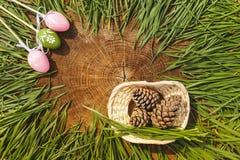 Glückliche künstliche eags Ostern mit Tannenzapfen hölzernem backgroung Stockfotos
