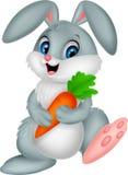 Glückliche Kaninchenkarikatur, die Karotte hält Lizenzfreies Stockbild