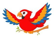 Glückliche Keilschwanzsittichvogelkarikatur Lizenzfreie Stockfotos
