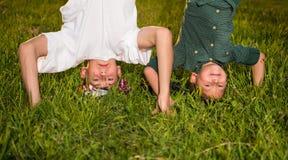Glückliche Kinder, die auf grünem Gras umgedreht stehen stockfotos