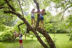 Glückliche Kinder, die oben Baum im Sommerpark klettern Stockfotografie