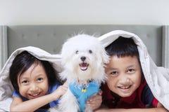 Glückliche Kinder, die zu Hause mit Hund spielen Stockfotografie