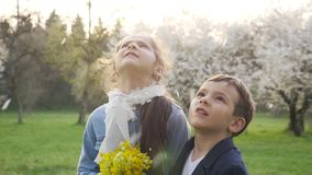 Glückliche Kinder, fallender Blumenblatt-Baum stock video footage